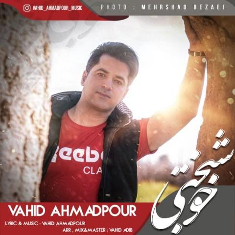 دانلود موزیک جدید وحید احمدپور خوشبختی