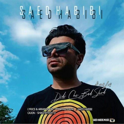 دانلود موزیک جدید ساعد حبیبی دیدی چه بد شد
