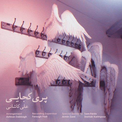 دانلود موزیک جدید علی کاشانی پری کجایی