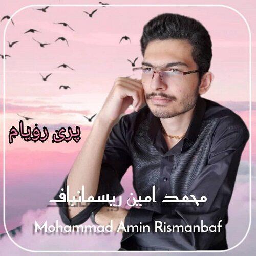 دانلود موزیک جدید محمد امین ریسمانباف پری رویام