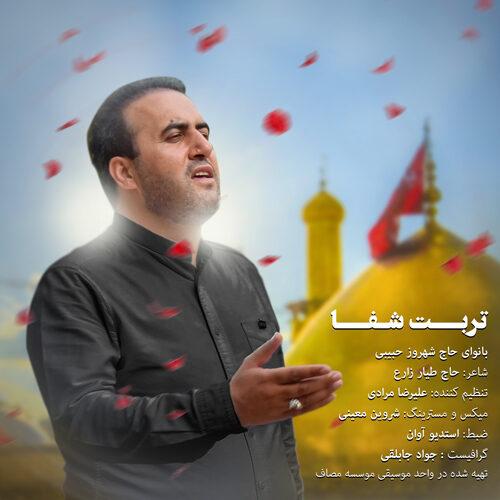 دانلود موزیک جدید شهروز حبیبی تربت شفا